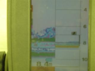 DSC03932r.jpg