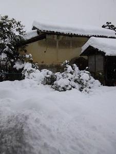 140214大雪2