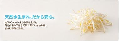 富士食品工業もやし