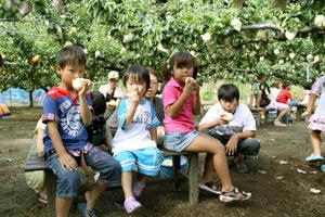 梨食べる子供