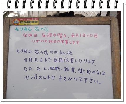20140729森庵③