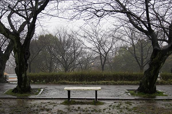 雨の大森-10