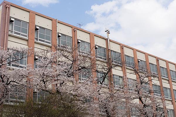 桜風景2-9