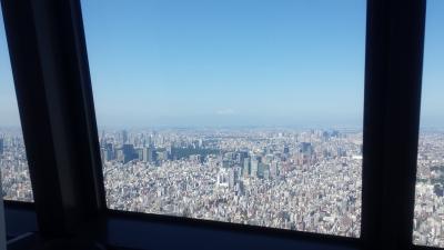 東京スカイツリー(富士山)400
