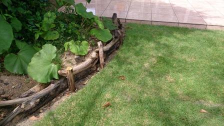 流木の花壇