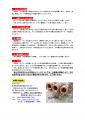 2014タコつぼ注意事項3p