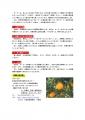 2014ミカン注意事項3p