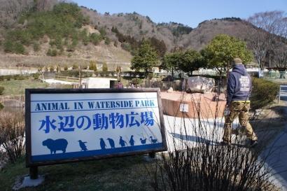 水辺の動物広場