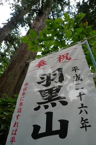 羽黒山キャンプ12