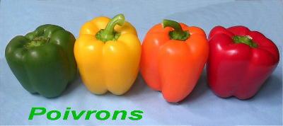 140712-01Poivrons