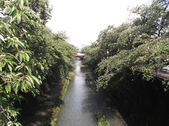 石神井2006
