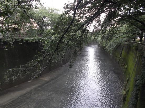 石神井2025