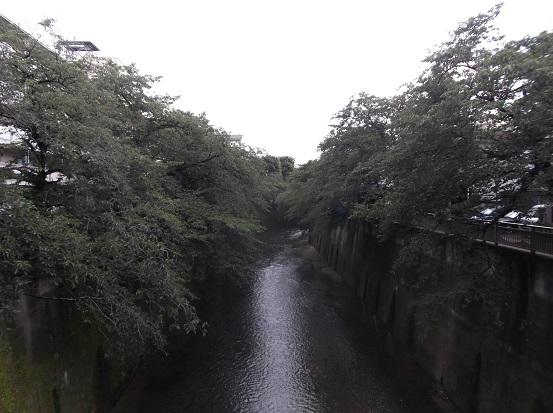 石神井2204
