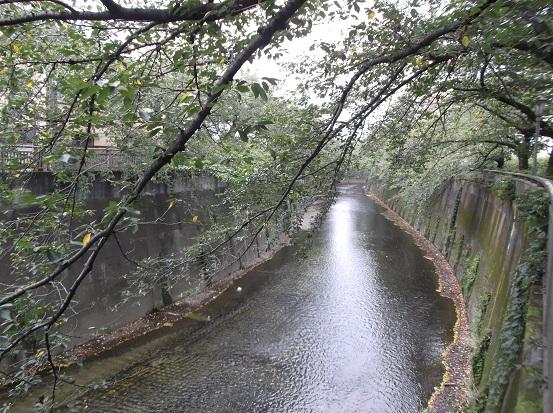 石神井2319