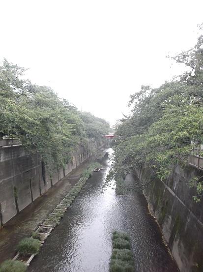 石神井2240