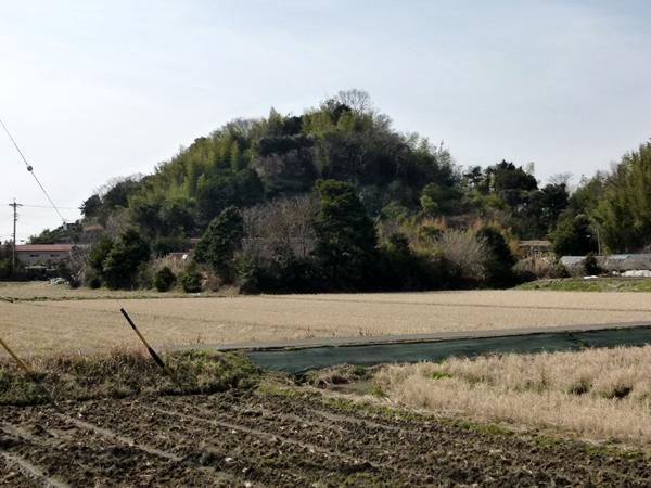 Ishiwaki Castle