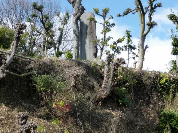 Moriyama Castle 01