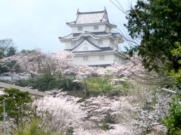 Otaki Castle01