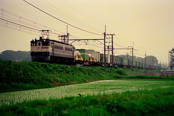 1493_10an_EF65.jpg