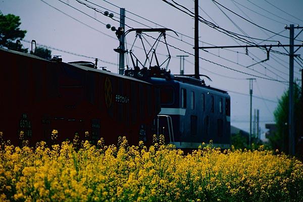 2489_13_.jpg