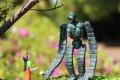 シータに花を渡すロボット