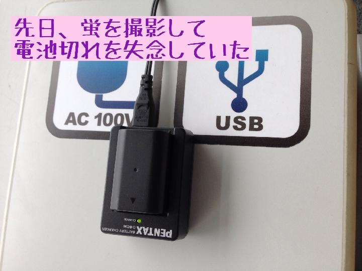 kumamoto0001-20140623 (2)