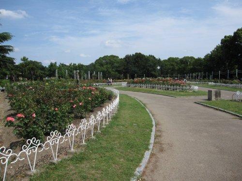 4鶴舞公園
