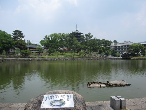 11猿沢池