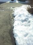 雪が融けて