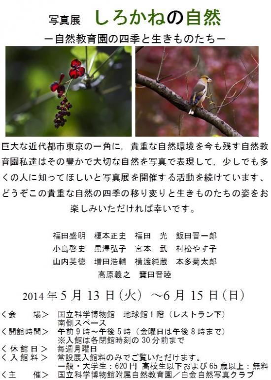 rg36_convert_20140505103922.jpg