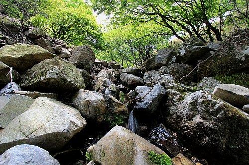 竜ヶ岳03