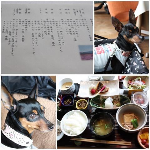 fuji16.jpg