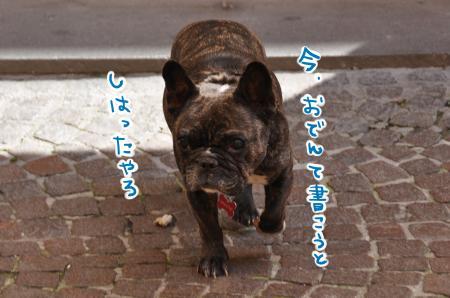 DSC_6661_convert_20140528062642.jpg