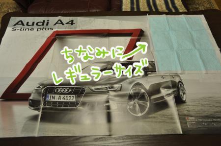 DSC_9951_convert_20140704181317.jpg