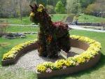 ガーデンにいたお馬