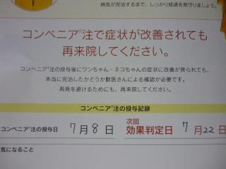008_convert_20140711204423.jpg