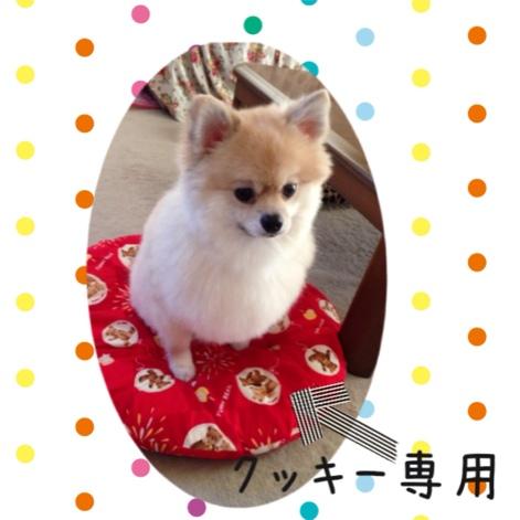 fc2blog_20140730192921707.jpg