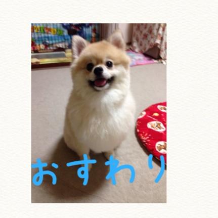 fc2blog_20140731210844fe0.jpg
