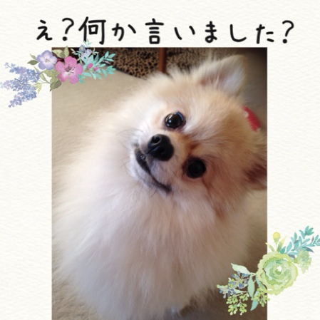 fc2blog_20140914090559118.jpg