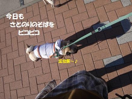DSC04883_20140625043908526.jpg