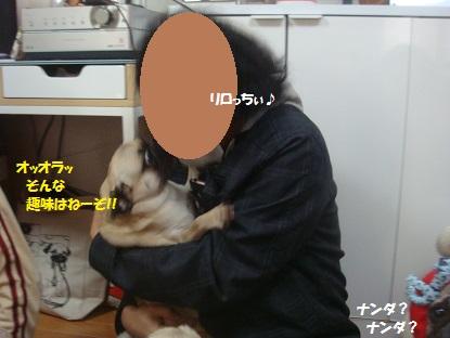 DSC07157.jpg
