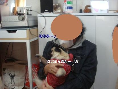 DSC07159_201402151334331ae.jpg