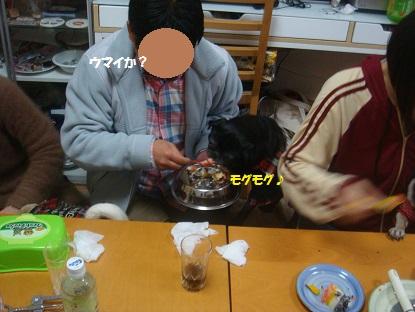 DSC07309_201402151535442e4.jpg