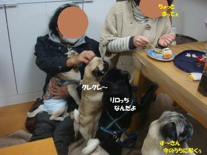 DSC07318_20140215154016a1e.jpg