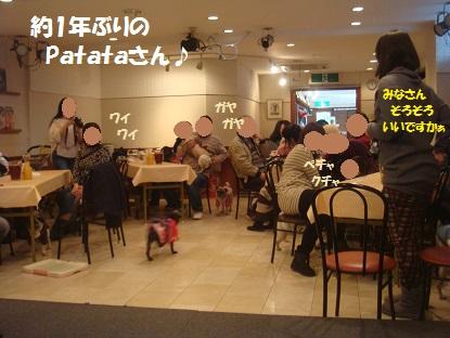 DSC07352_20140216125806200.jpg
