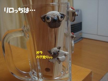 DSC07623_201402152013398ef.jpg