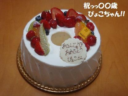 DSC08081_20140312041222f99.jpg