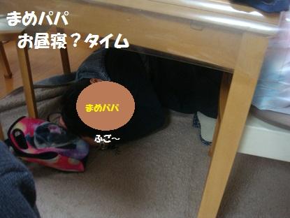DSC08197_20140313195815b23.jpg