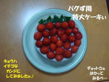 DSC08252_20140313181510647.jpg