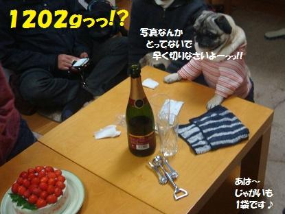 DSC08254_20140313181510148.jpg